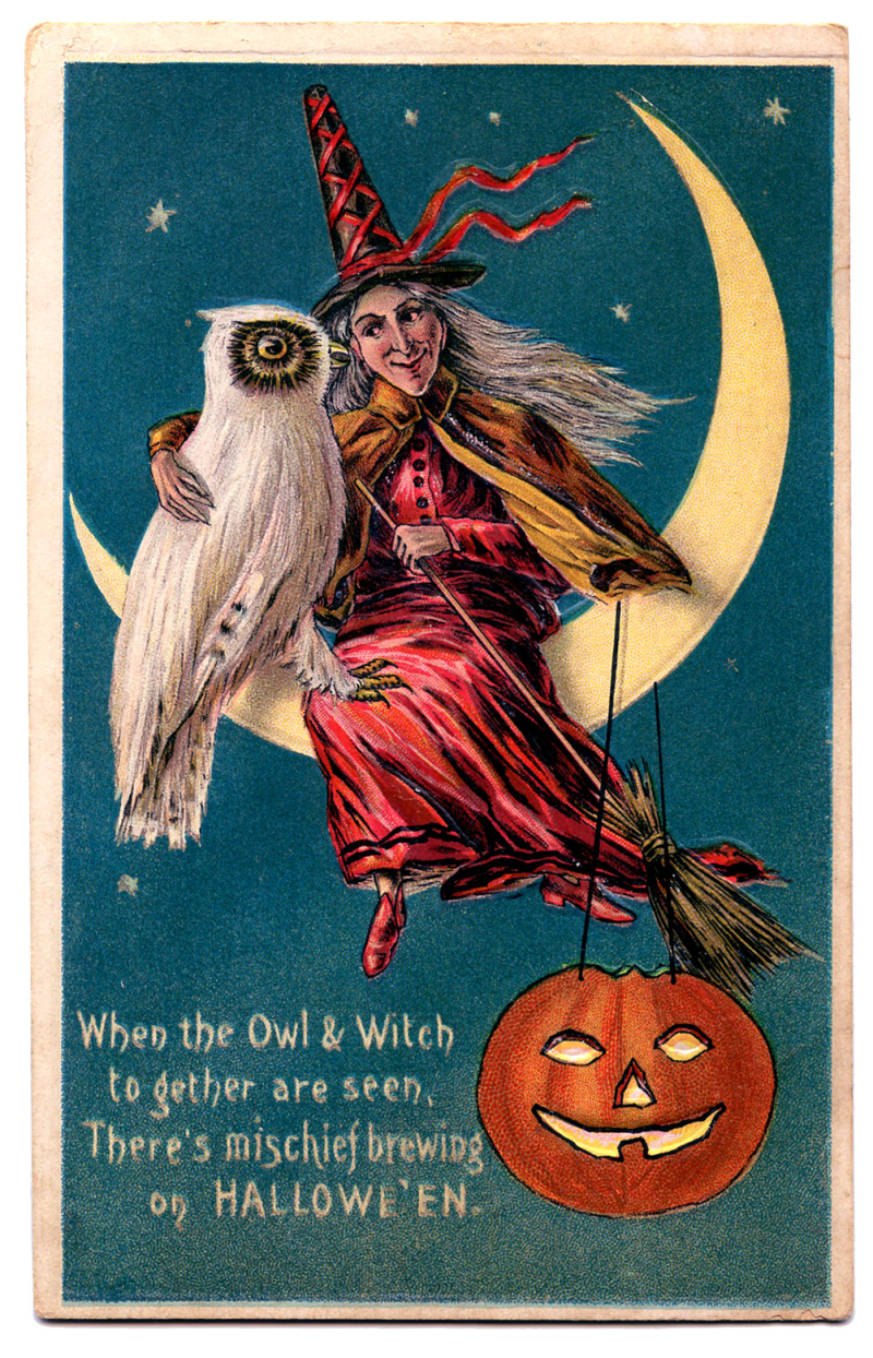 Halloween+witch+owl+vintage+image+graphicsfairy8b